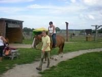 Uczesnicy podczas jazdy na koniu 1 z 14